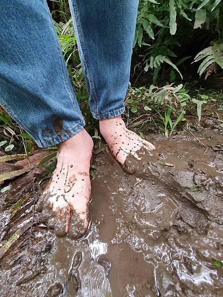 赤腳生活 親近泥土 有利身心健康
