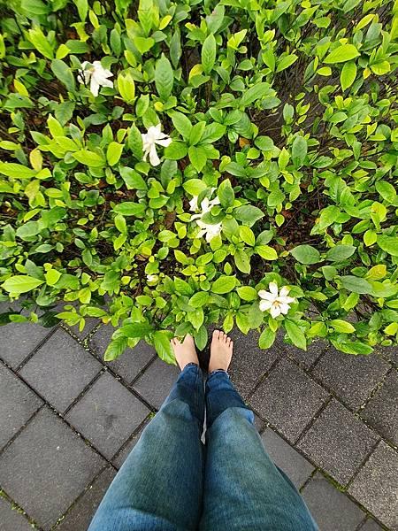 赤腳生活 與大自然做連結,享受生活