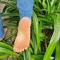 不穿鞋的生活最快樂,所以我選擇赤腳生活