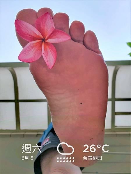 我是赤腳生活達人斌哥,跟著我赤腳生活你會得到更多的人生新體驗 2021.06.05