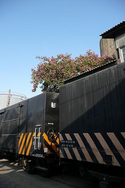 P1150247.JPG