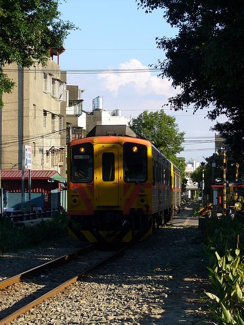 P1190313.JPG