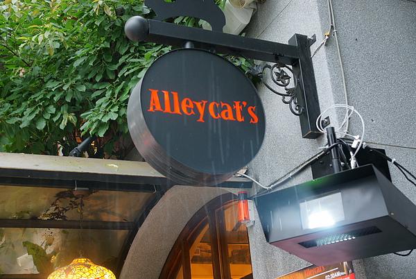 Allycat's