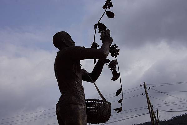 BLACK GOLD 紀錄片 衣索比亞 OROMIA