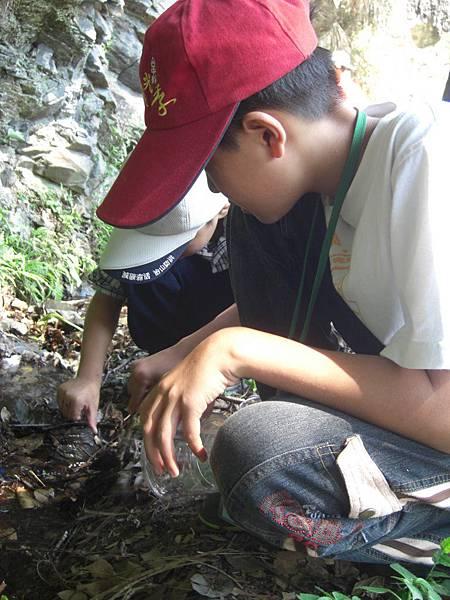 20110705-07_fun野叢林-13.JPG