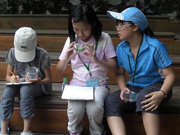 20110705-07_fun野叢林-28.JPG