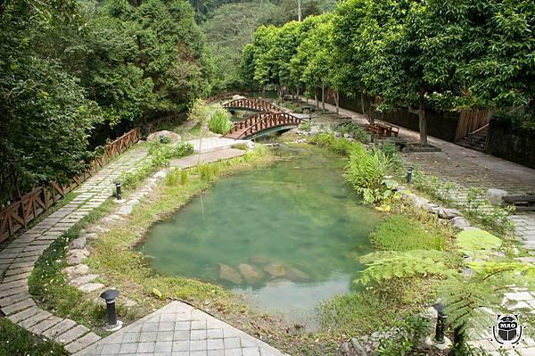八仙山生態池-2