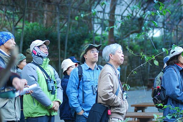 20101229-30_台中八仙山-小毛-87_調整大小.jpg