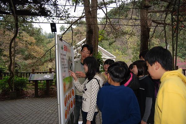 20110127-28_台中八仙山-小毛-75_調整大小.jpg