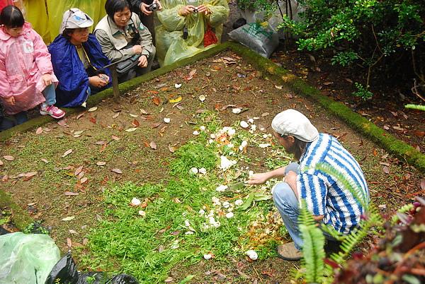 20101114_台中八仙山_小毛-32.jpg