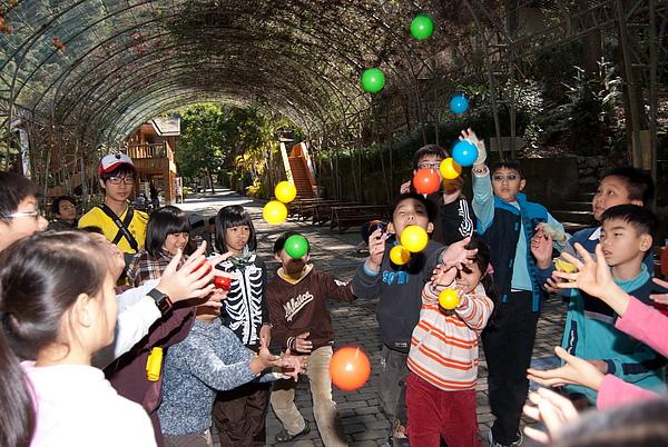20110124-26_台中八仙山_小毛-52_調整大小.jpg