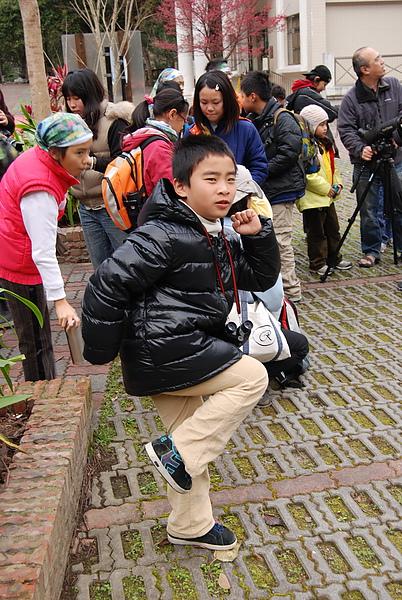 20110124-26_台中八仙山_小毛-88_調整大小.jpg