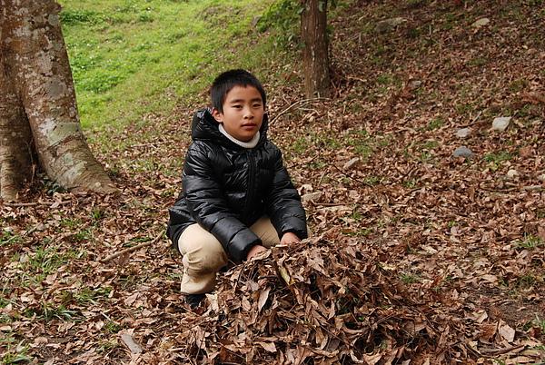 20110124-26_台中八仙山_小毛-146_調整大小.jpg
