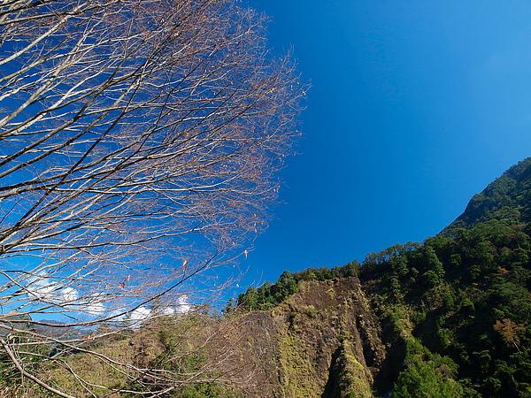 20110127-大墩國中-范姜_1278044_調整大小.jpg