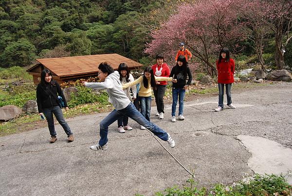 20110127-28_台中八仙山-小毛-106_調整大小.jpg