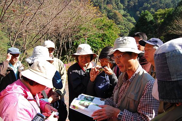 20101229-30_台中八仙山-小毛-115_調整大小.jpg