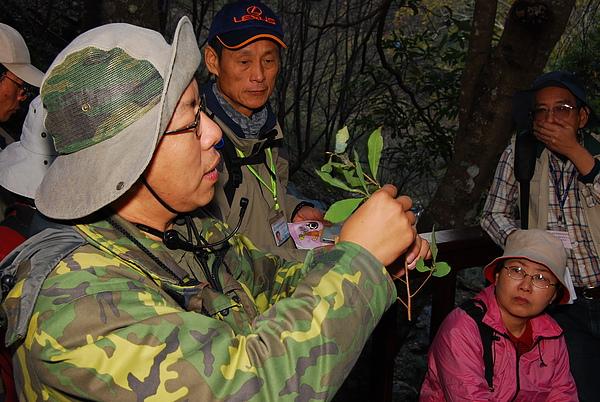 20101229-30_台中八仙山-小毛-26_調整大小.jpg