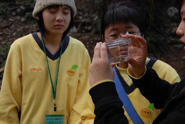 20110127-28_台中八仙山-小毛-9_調整大小.jpg