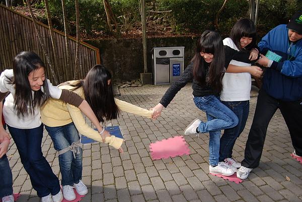 20110127-28_台中八仙山-小毛-69_調整大小.jpg