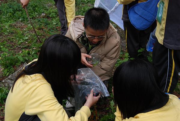 20110127-28_台中八仙山-小毛-10_調整大小.jpg