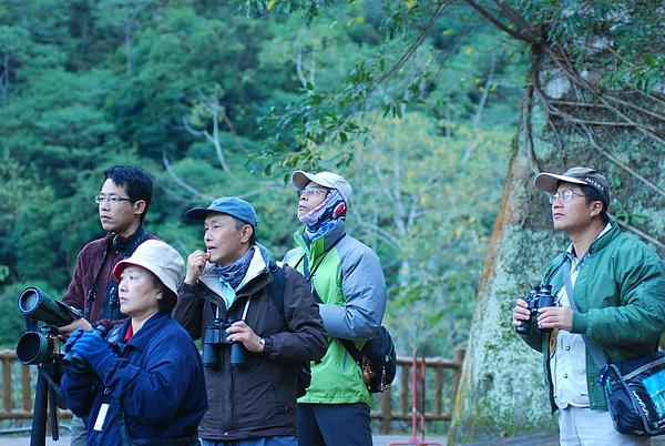 20101229-30_台中八仙山-小毛-97_調整大小.jpg