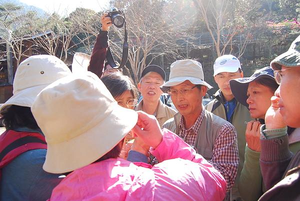 20101229-30_台中八仙山-小毛-111_調整大小.jpg