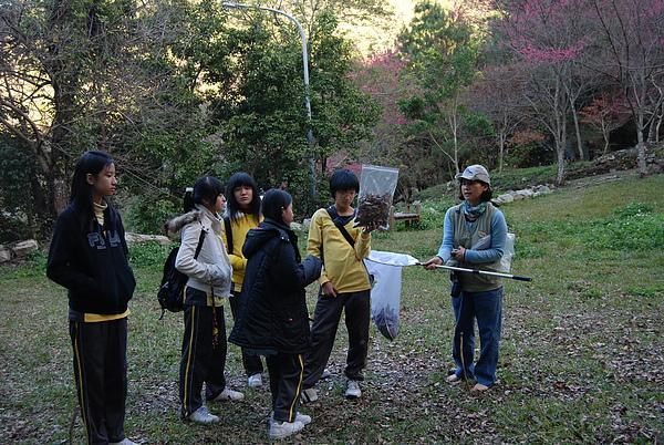 20110127-28_台中八仙山-小毛-14_調整大小.jpg