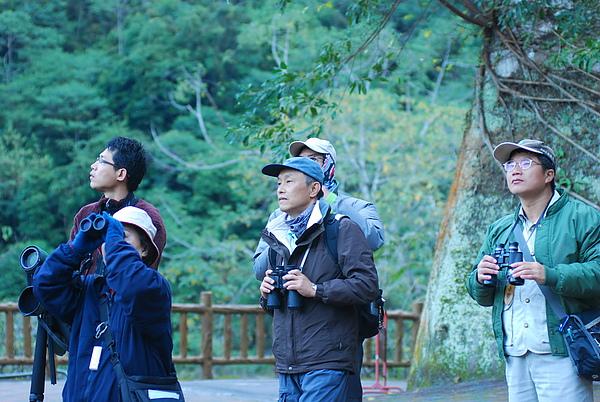 20101229-30_台中八仙山-小毛-96_調整大小.jpg