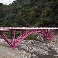 20110210_台中八仙山_小毛-27_調整大小.jpg