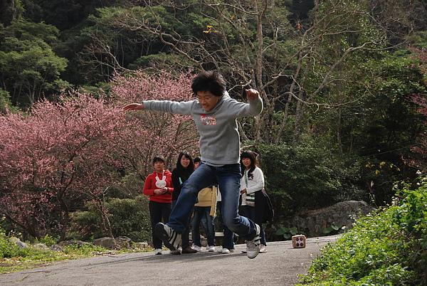 20110127-28_台中八仙山-小毛-107_調整大小.jpg