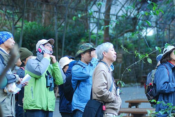20101229-30_台中八仙山-小毛-86_調整大小.jpg