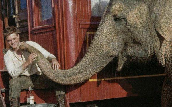 大象的眼淚-1.jpg