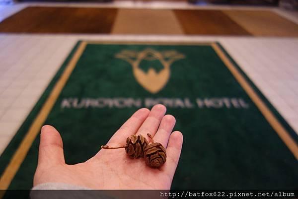 Kuroyon Royal Hotel 果實