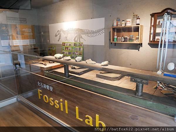 化石工作室