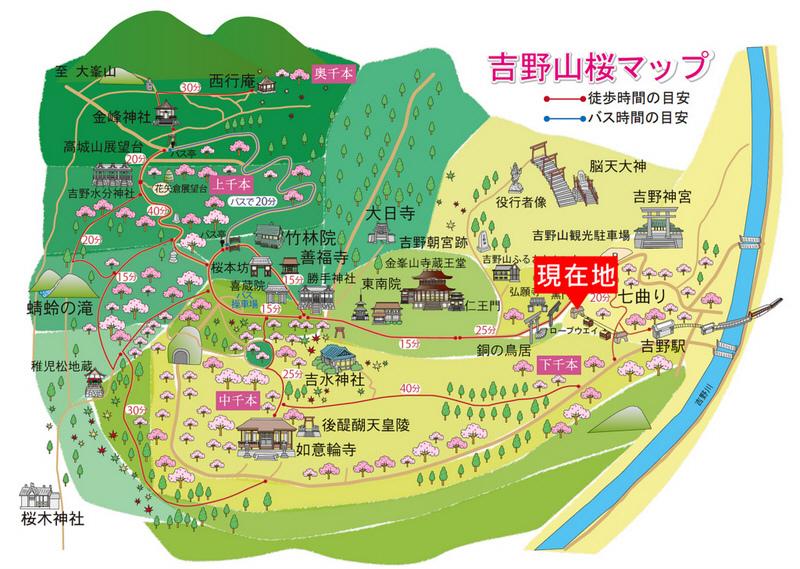 吉野山-櫻花地圖