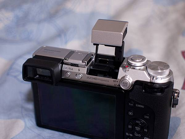 P1230623-s.jpg