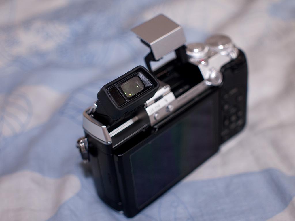 P1230624-s.jpg
