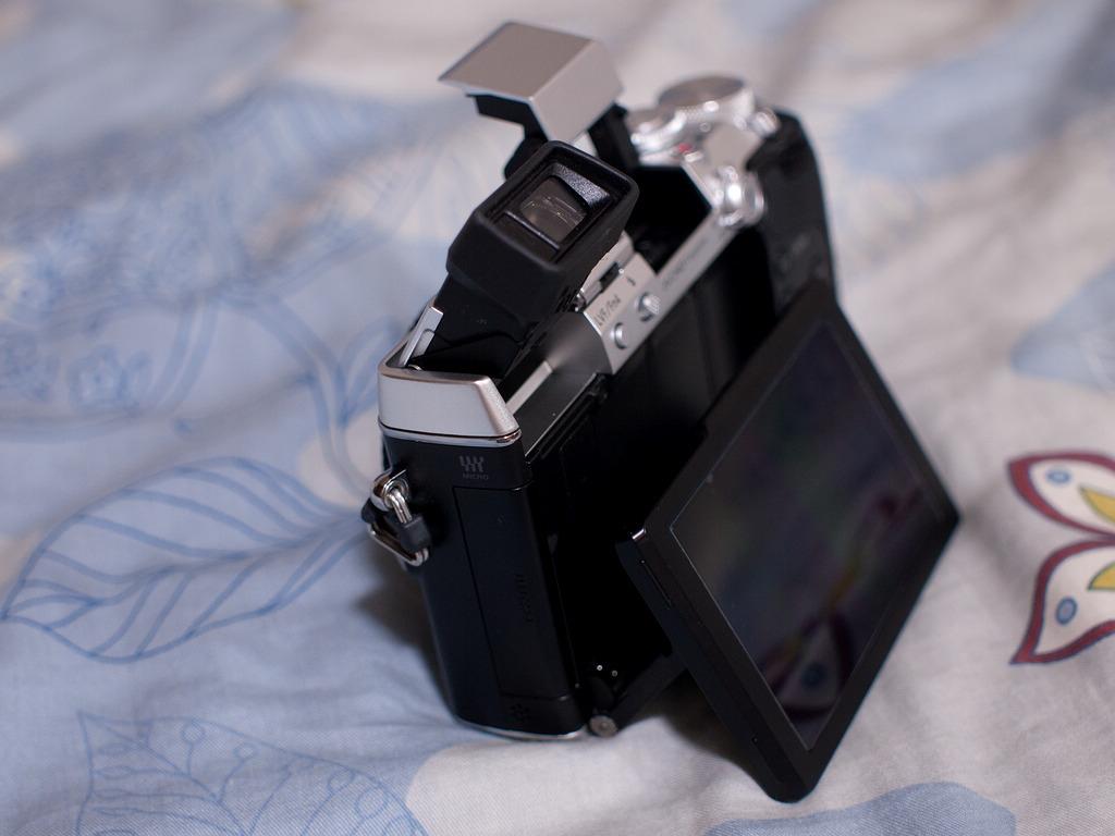 P1230625-s.jpg