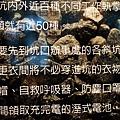 1331649312-P1140638-s