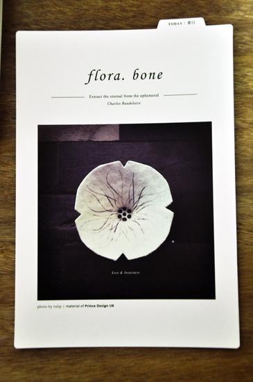 bone11