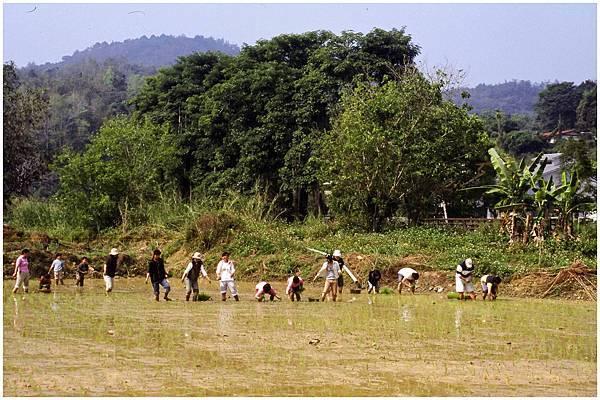 休閒農業2.jpg