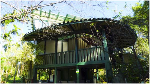 綠光建築外觀,與樹叢融為一體.jpg