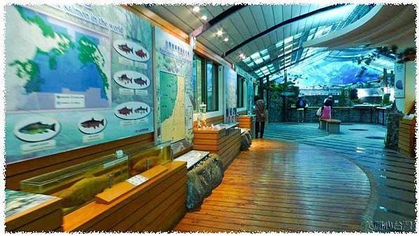 台灣櫻花鉤吻鮭生態中心02