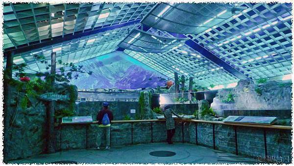 台灣櫻花鉤吻鮭生態中心04