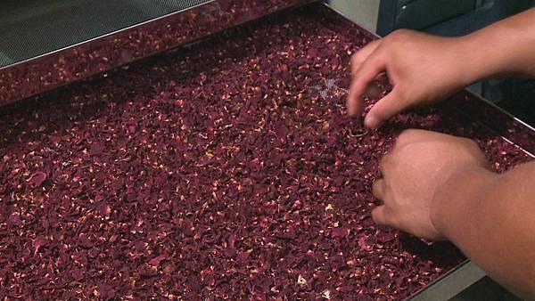 玫瑰花瓣烘乾後  可用來泡玫瑰花茶