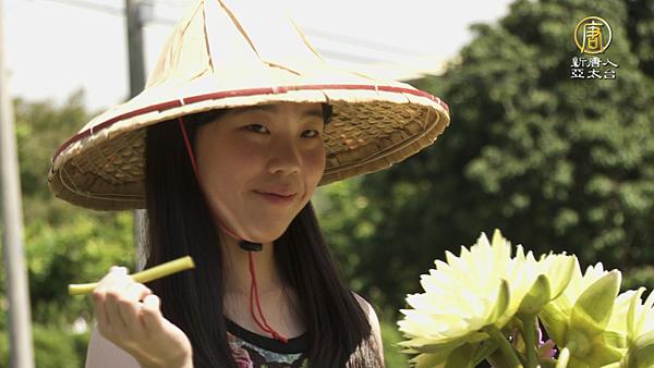 羅東溪-採蓮蜜01.png