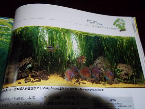 100_3287.JPG