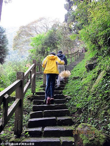 103-04-03 阿里山雲景之露 (31).JPG