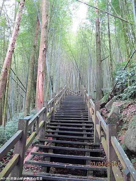 103-04-03 阿里山雲景之露 (34).JPG