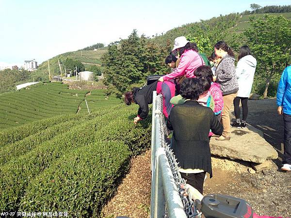 103-04-03 阿里山雲景之露 (56).JPG